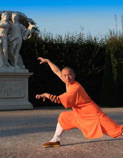 Shaolin Wushu Austria Vienna Kung Fu