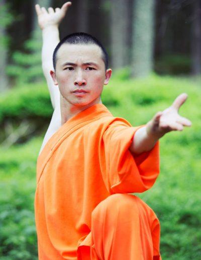 Shifu Shi Heng Zhan