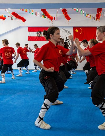 Kung Fu Wien Shaolin Wushu Training Center