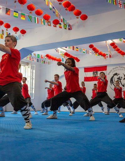 Shaolin-Wushu-Training-Center-Kung-Fu-in-Wien-8